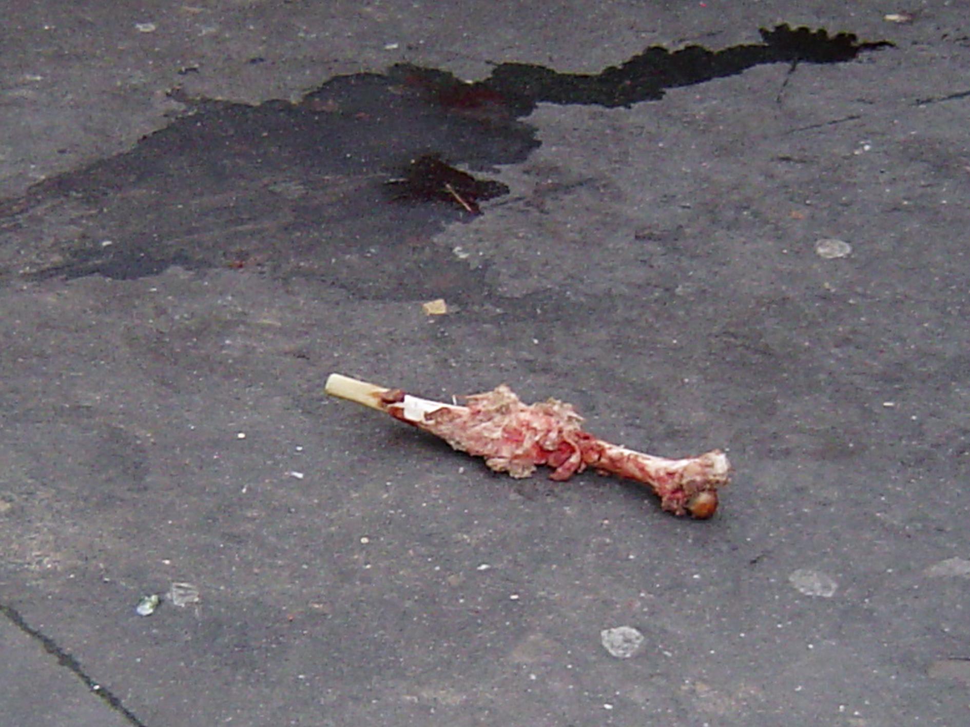 flayed alive - photo #13